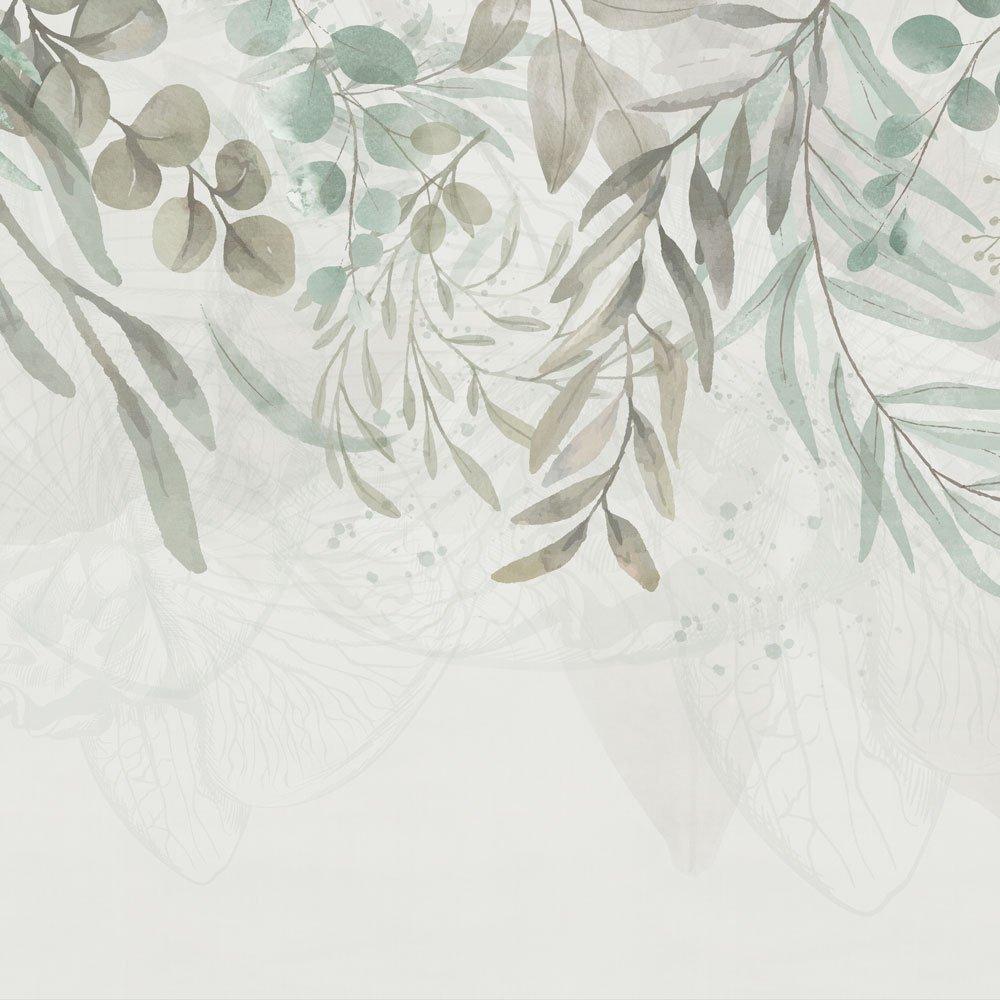 PDW21-FLW-664-2000x1000-FALLING PLANTS